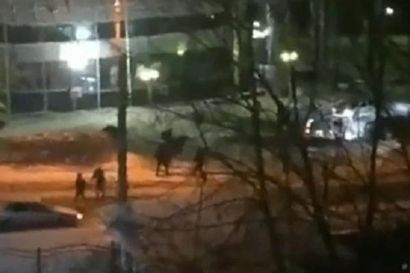 Жители соседних домов были шокированы происходящим и сняли драку на видео