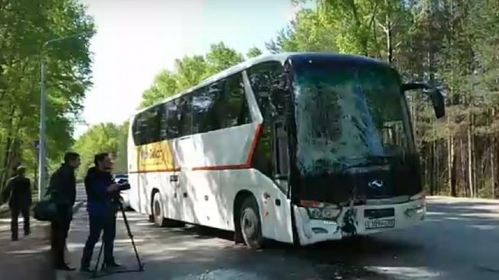 В Соликамске столкнулись междугородный и городской автобусы