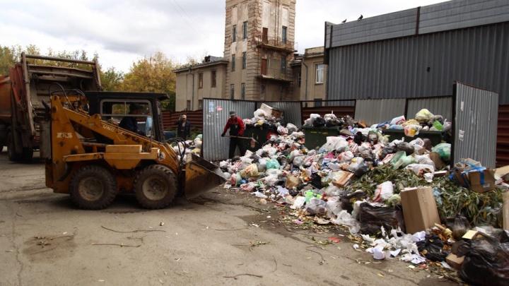 Мусорный «баг»: ответственных за вывоз отходов заставили пересчитать плату для челябинцев