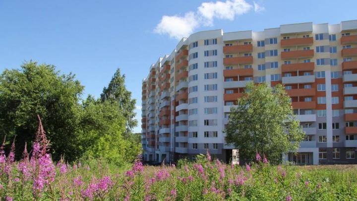 Счастье можно купить: в Екатеринбурге появились квартиры с загородным колоритом