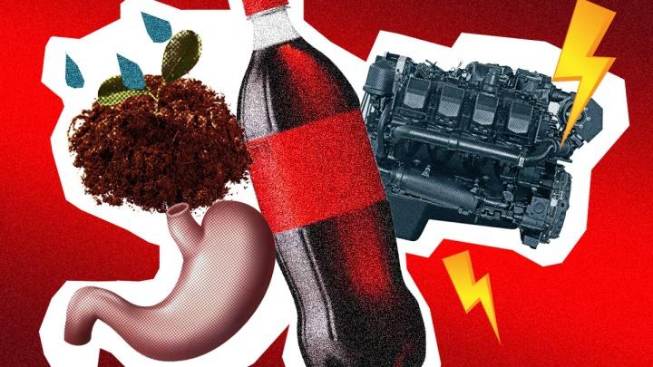 Волшебные пузырьки. Маринуем мясо, прочищаем двигатели и моем волосы «Кока-Колой» по совету ученых