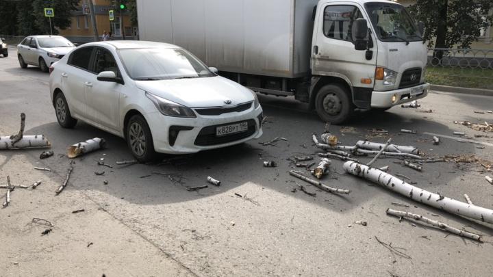 «Бревна полетели»: в Екатеринбурге на машину, ехавшую по дороге, рухнула сухая береза
