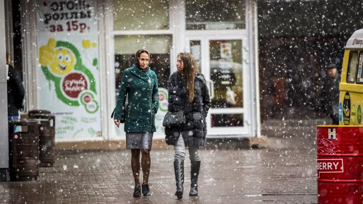 К Новосибирску снова идёт снег: синоптики рассказали, когда изменится погода