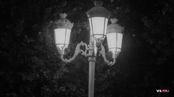 Лаконичный Волгоград: живущий, цветущий, мечтающий