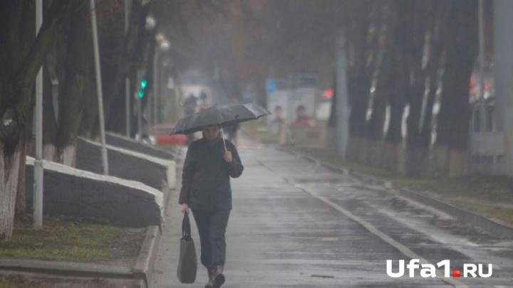 Синоптики Башгидромета рассказали, какая погода будет в ноябре