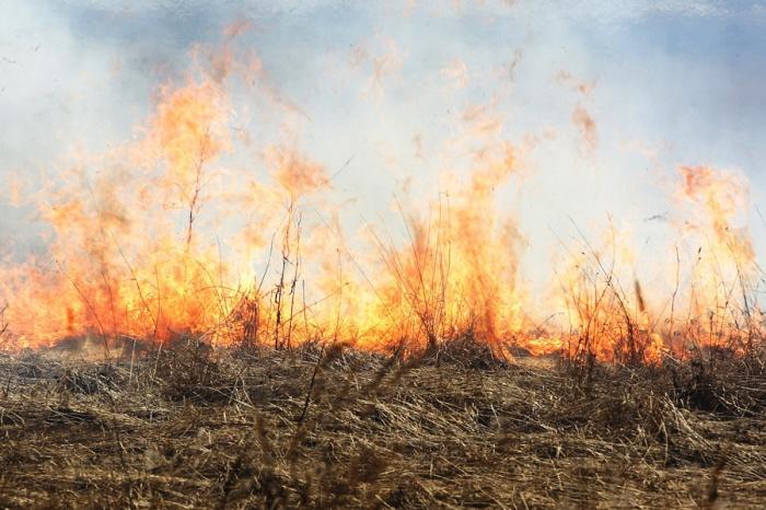 Штормовое предупреждение: сохраняется опасность пожаров