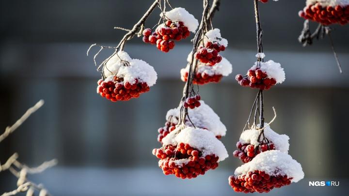Снегопады на фоне оттепели: синоптики рассказали о погоде на выходные