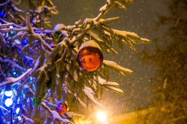 Снег теперь только в наших воспоминаниях
