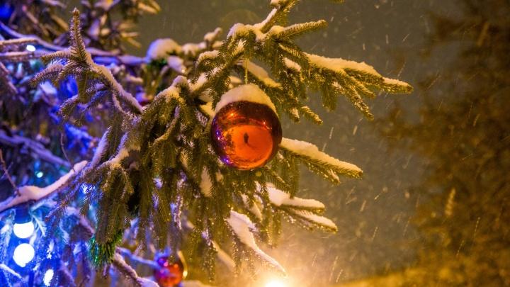 Погода на Новый год: на Ярославль обрушатся ливни