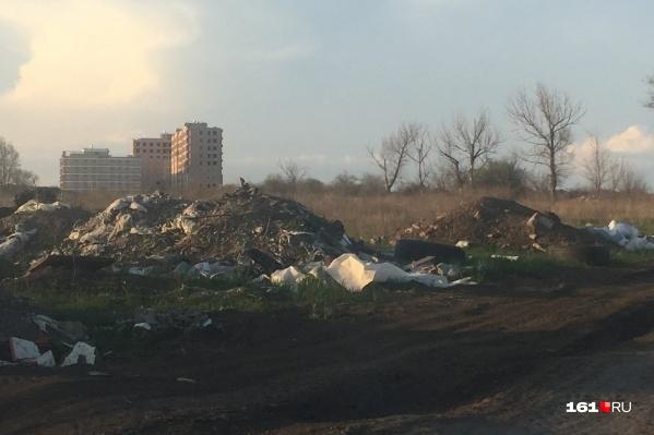 Участок между Доватора и Совхозной. Горящий мусор здесь не редкость