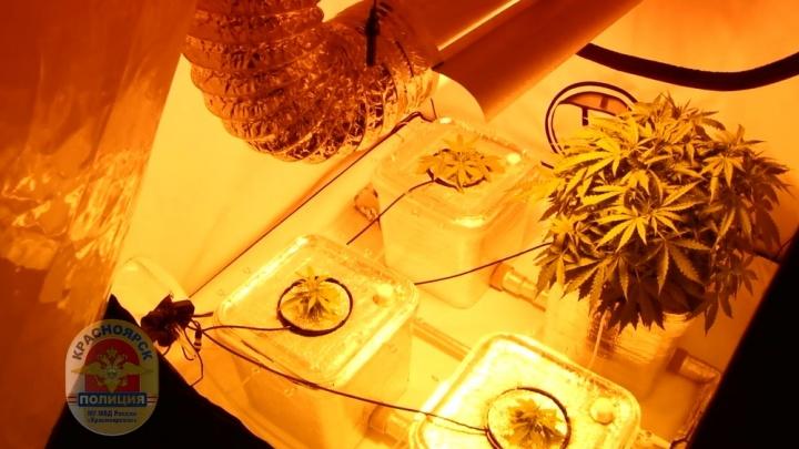 Аккуратный наркоман-изобретатель устроил лабораторию в шкафах и получил приговор