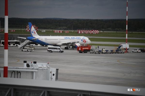 Тот самый самолет, экстренно севший в Кольцово