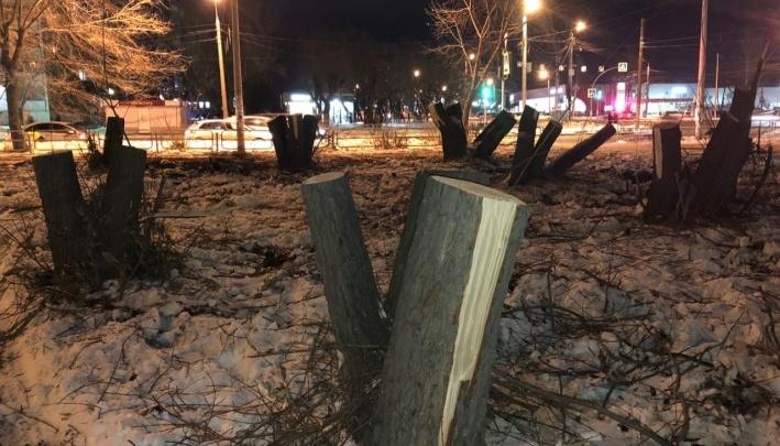 Хозяин участка со спиленной рощей в Челябинске раньше пытался построить кафе в сквере на Кирова