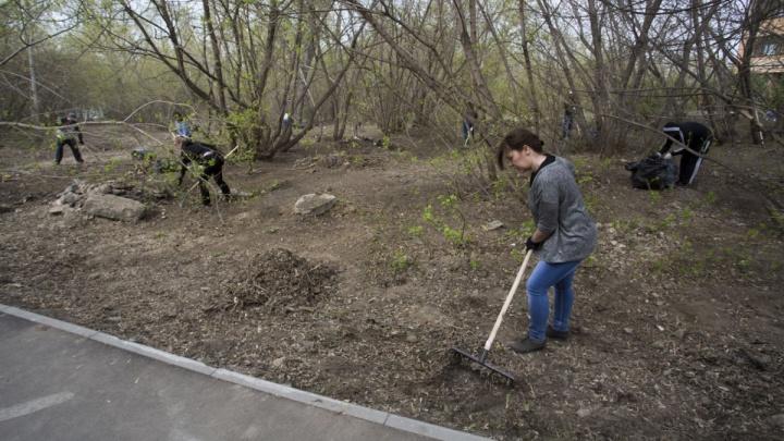 Жители домов на Котовского обнаружили забор на месте предполагаемого сквера