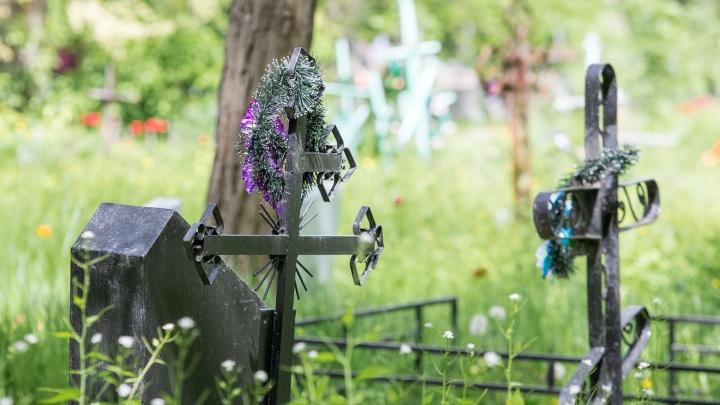 В Ростовской области на кладбище нашли тайник с оружием в заброшенном надгробии