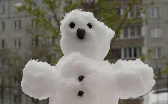 «Зима что-то попутала»: новосибирцы слепили снеговиков из майского снега