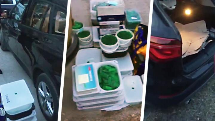 У новосибирского учёного украли 342 килограмма изумрудов