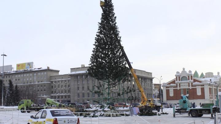Прощай, праздник:в Новосибирске разбирают главную городскую ёлку