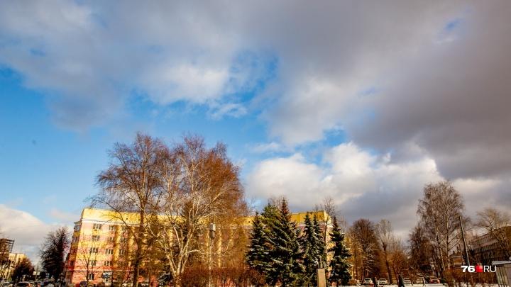 «Зима откладывается»: синоптики предупредили о вторжении аномального субтропического тепла с Балкан