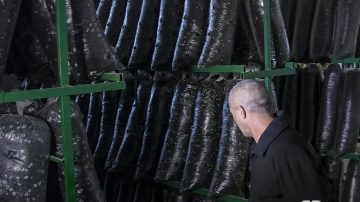 Шьют одежду и пекут хлеб: в Самарской области более 2500 зэков освоили новые профессии