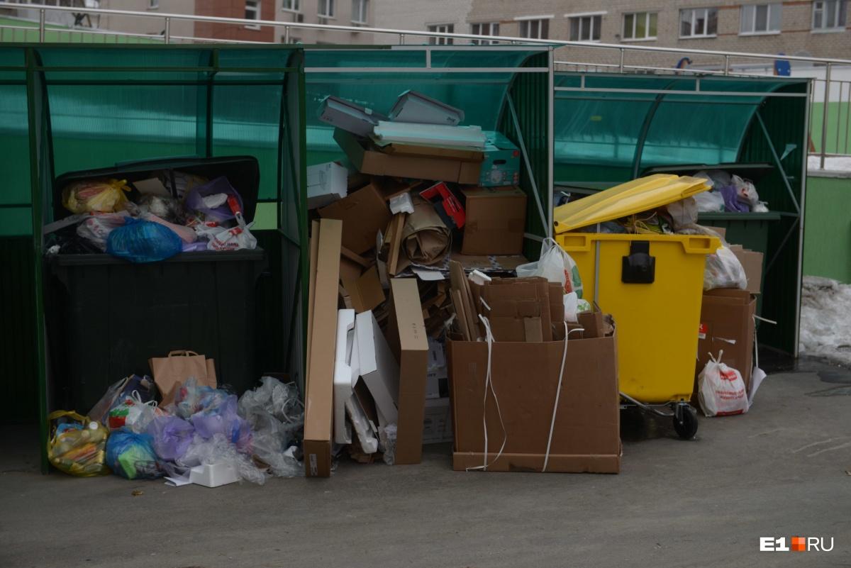 Если мусор не вывезен вовремя, отвечает за это региональный оператор, но за состояние самой контейнерной площадки — управляющая компания