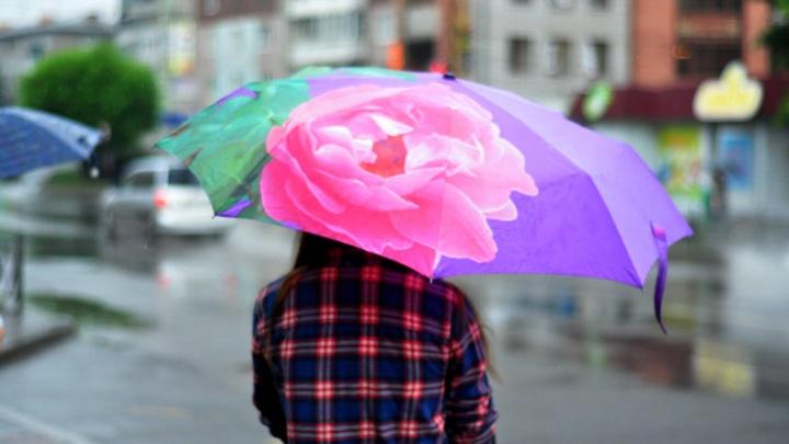 Омские синоптики спрогнозировали дождь с грозой