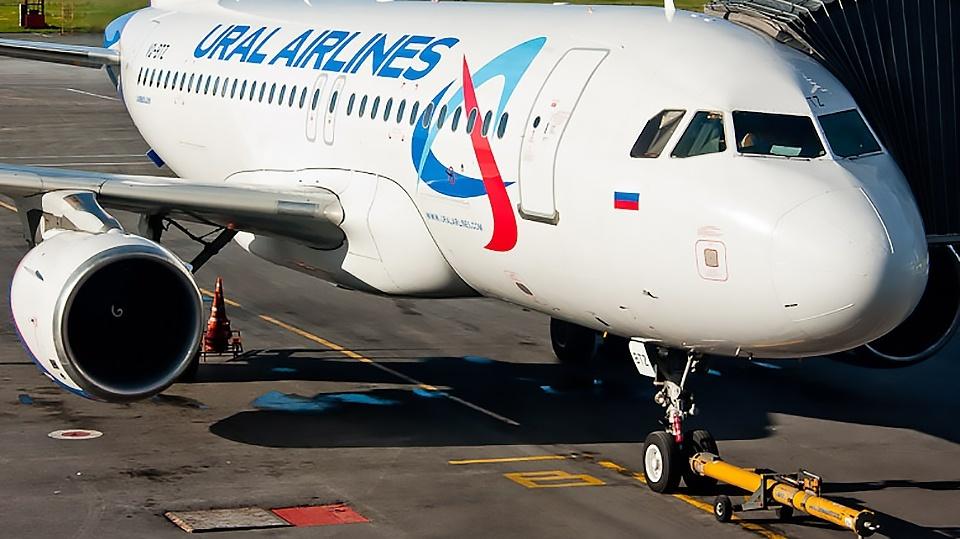 Чтобы вывести дебоширов из самолёта, экипажу пришлось позвать полицейских