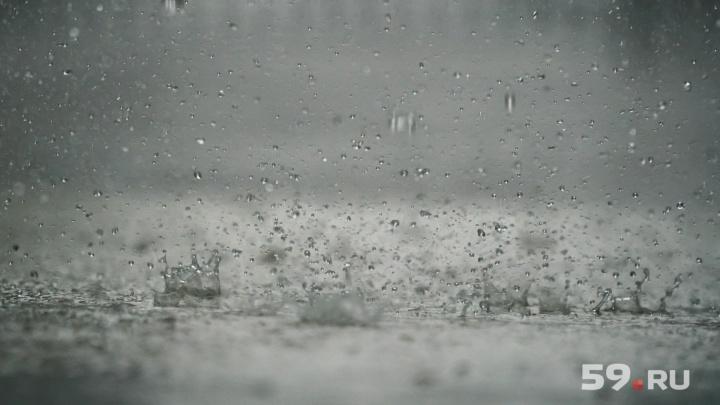 Дожди и сильный ветер. В Прикамье объявили штормовое предупреждение