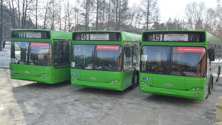 Поедем на дачу: власти объявили о запуске дачных автобусов для новосибирцев
