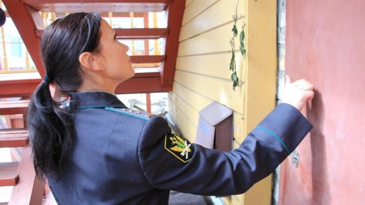Битва за лавку: приставы не могут найти владельца незаконной постройки на Чумбарова-Лучинского