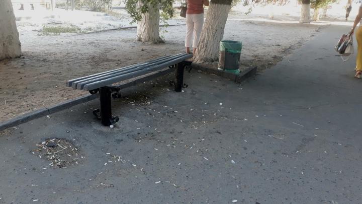 Волгоградские коммунальщики забыли об уборке городских улиц