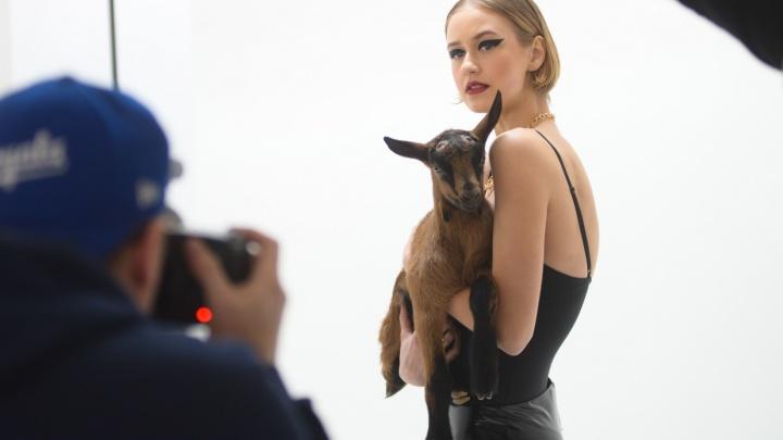 Фотограф, снимавший Джулию Робертс и Ди Каприо, устроил фотосессию с уральскими козами: как это было