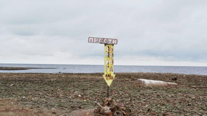 На президентский грант в Рыбинске раскрасят фотографии Мологи