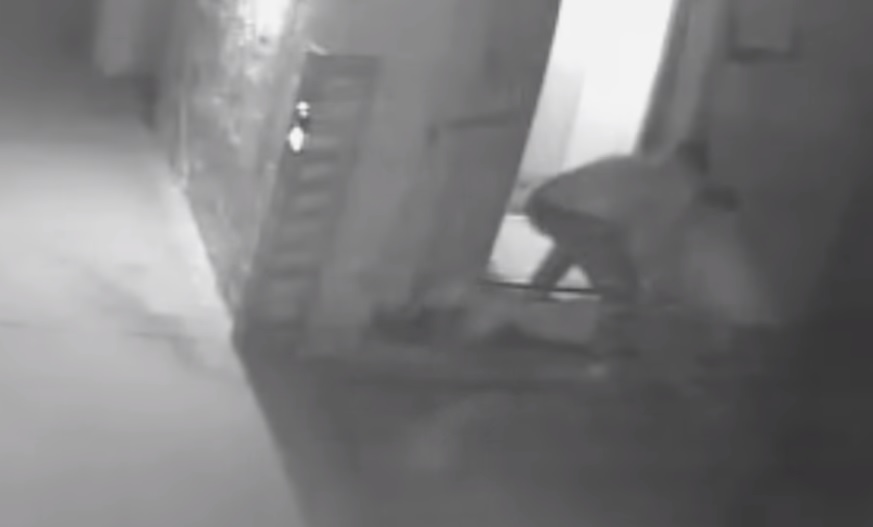 На видеозаписи полицейские избивают нижегородца в течение почти 10 минут возле лифта