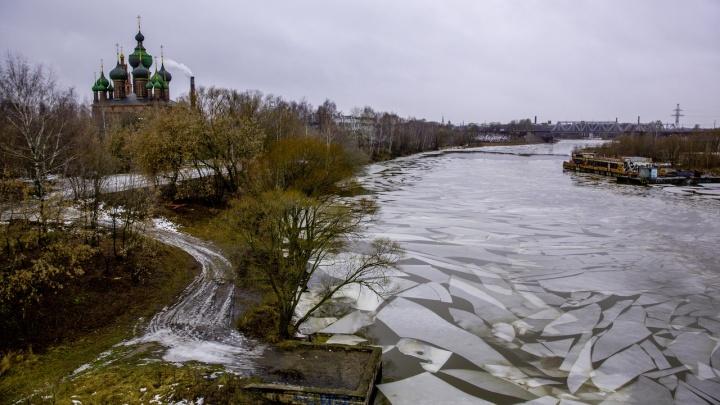 Из-за аномально теплой зимы река Которосль разбилась на осколки. И это так красиво!