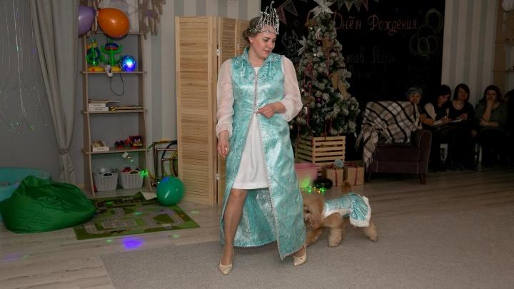 Собака-Мышка, Дед Мороз и Зимушка: в Кургане появился театр дрессированных зверей