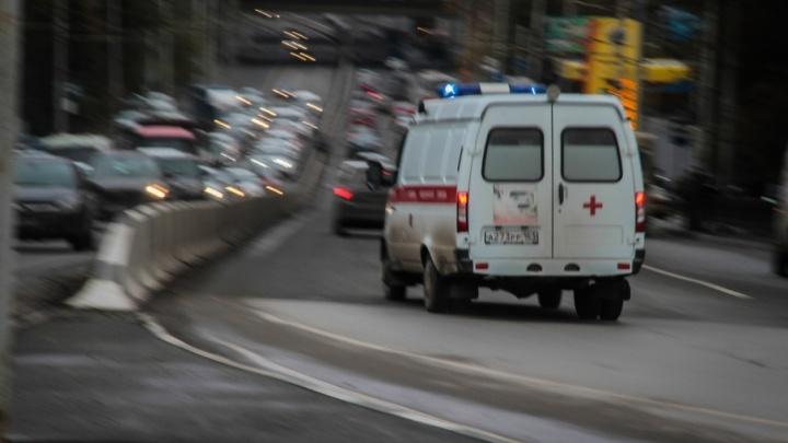 Без сознания и с открытым переломом: в Ростове дерево рухнуло на двух пенсионерок
