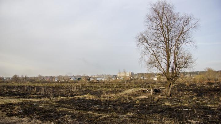 Горела Затулинка и ОбьГЭС: по Новосибирску прокатилась серия пожаров из-за сухой травы