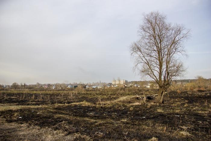 Чаще всего в Новосибирске горит мусор и трава. Этому способствует сухая погода