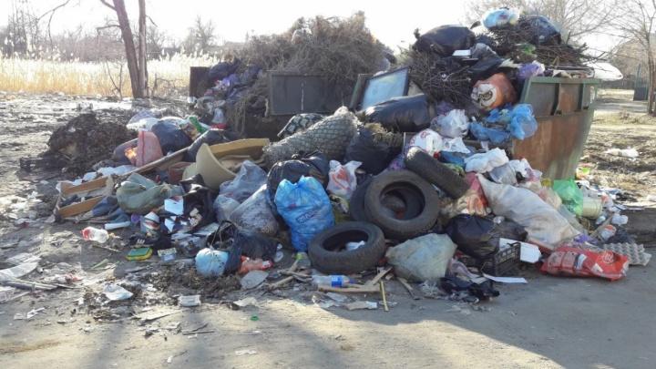 В Волгоградской области на ликвидацию экологического ущерба от отходов направили 56 миллионов рублей