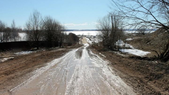 «Сплошное месиво»: в Ярославской области из-за размытой дороги дети ездят в школу на такси