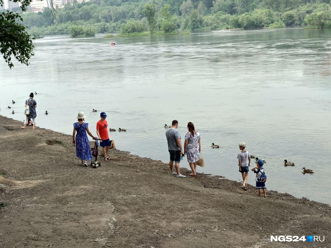 Тем, кто опасается жары, рекомендуем всё-таки приехать на Татышев и спуститься к реке. Здесь за почти 3 часа репортажа нашлось самое прохладное место!