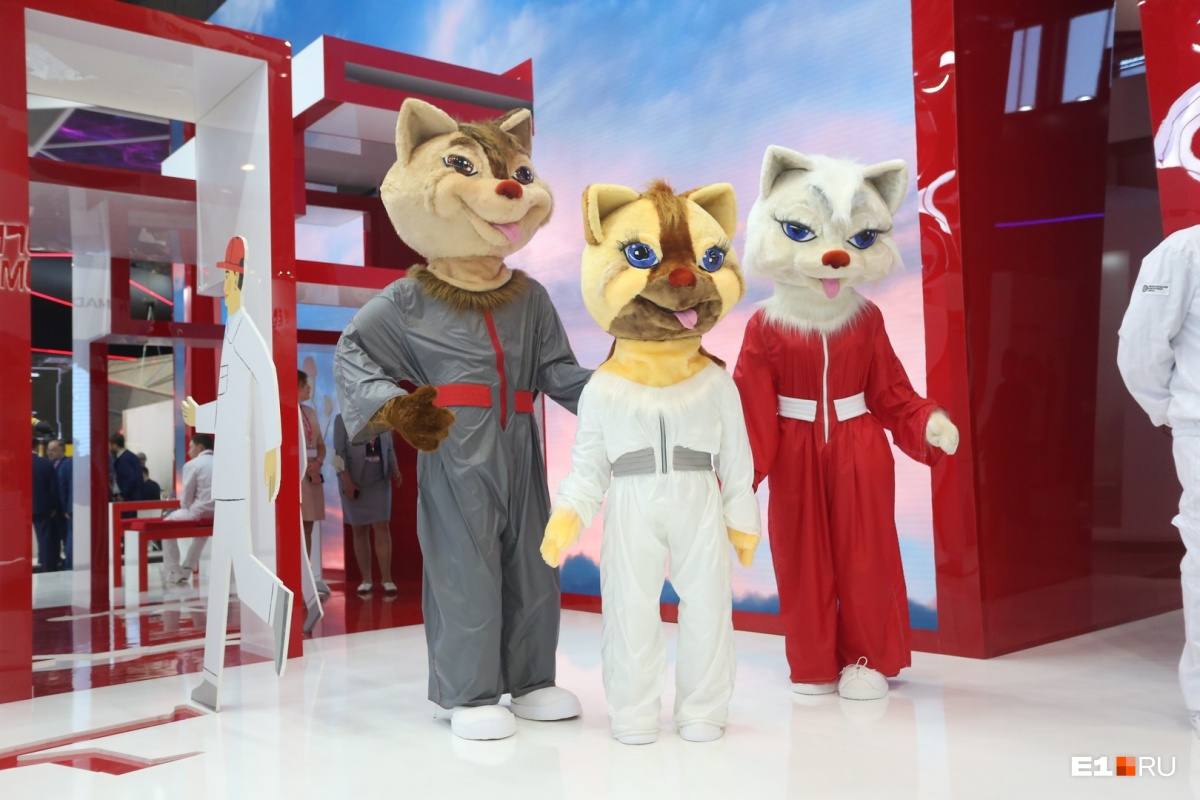 На стенде ЧТПЗ посетителей встречают три пушистых манекена. Кажется, что это коты, но нет: это соболя. Появились они тут не случайно. Во-первых, соболь — это символ уральских заводов, во-вторых, именно он изображен на гербе Первоуральска