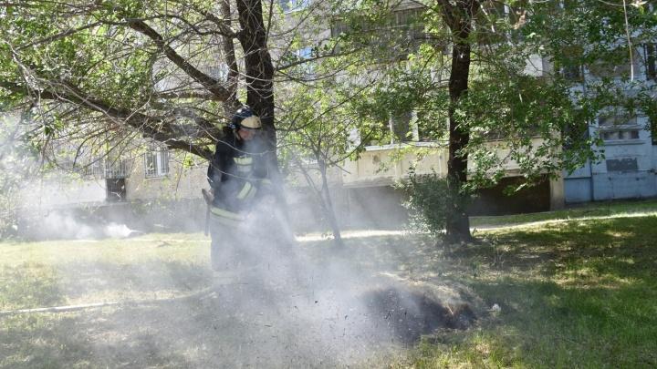 В Тюмени детвора чуть не сожгла машины, устроив костер из пуха
