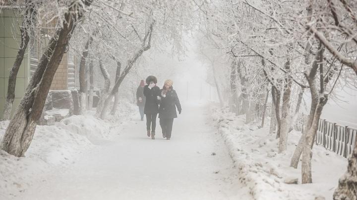 Резкий перепад температур предрекают синоптики в Красноярске