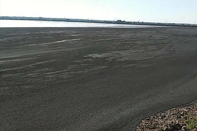 Ущерб Аргаяшскому району от загрязнения земель куриным помётом оценили почти в 30 млн рублей