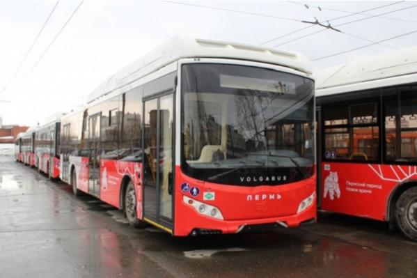 Новые автобусы частично заменят троллейбусы