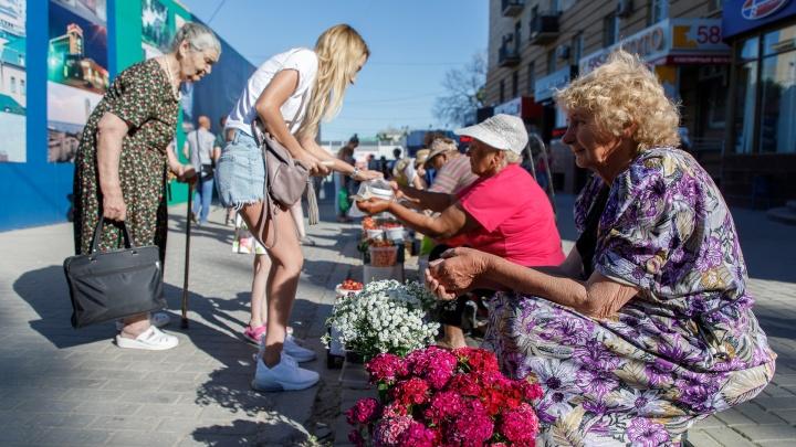 Дачников и перекупщиков выгоняют из переулка у Центрального рынка Волгограда