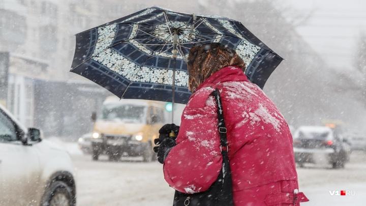 Гидрометцентр обещает Волгоградской области мокрый снег и усиление ветра до17 м/с