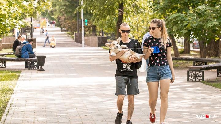 Жара уходит: какая погода ждет ростовчан в ближайшие пять дней